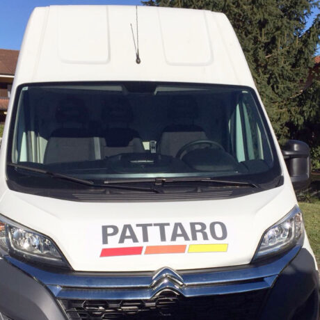 pattaro1